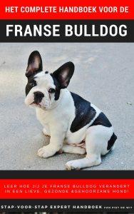 Het complete handboek voor de Franse bulldog